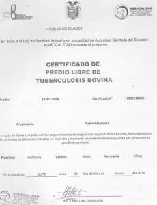 certifcicado tuberculosis