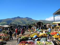 mercado machachi