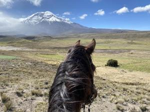 Fakir & Chimborazo volcano